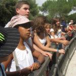 Montpellier - Les ados ont parlé anglais au zoo (17)