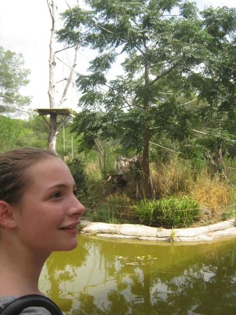 Montpellier - Les ados ont parlé anglais au zoo (19)
