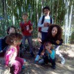 Au Kids School à Monptellier, les enfants répètent et apprennent l'anglais avec plaisir
